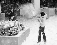 20021354-snowball-fight-005