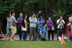 11182017-school43 (EN&Jane (enpan . 潘榮恩)) Tags: 2017 school xun cen sports
