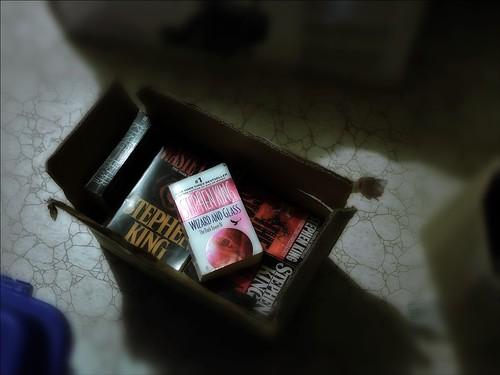 Stephen King book fan photo