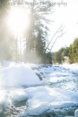 Winter (Dane Marek) Tags: kenora lakeofthewoods nature photography outdoors lake deer winter summer northwestern ontariopicturesdane