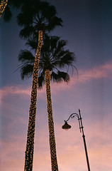 Xmas in Los Angeles (Blurmageddon) Tags: 35mm film analogphotography c41 unicolor unicoloruniroller nikonl35af pointandshoot pakonf135 nexlab fujic200 expiredfilm
