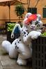 _DSC0788 (Kiba Wolf) Tags: dvc dreamvisioncreation snep snow leopard dragon ac2017