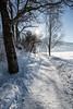 ****Wintercamping im Allgäu am Alpsee copyright eye5_danielzangerl (alpseecamping) Tags: schlitteln rodeln wintercamping campingplatz stellplatz wohnmobil caravaning winterurlaub oberallgäu allgäu alpsee immenstadt bühl oberstdorf oberstaufen alpen skifahren langlauf endlichraus endlichurlaub winter schnee schneeschuh zeitzumleben familienurlaub snowboard wandern hundeurlaub fellnase camperlife natur alpenluft gesundheit fitness ruhe romantik stille welovecamping outdoor