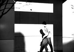 more chasing shadows (humbletree) Tags: madisonwisconsin blackfriday