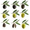 OLIVAS (iñaki preysler) Tags: food oil aceite olivo oliva aceituna