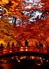 北野天満宮 / Kitano Tenmangu Shrine (Tatsuya Endo) Tags: 2017photo 北野天満宮 kitanotenmangushrine nikon ニコン 京都府 kyoto 京都市 京都 kyotonipponfestival knf