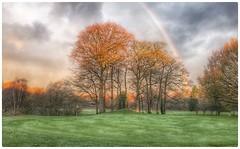 Handsworth Golf Club Birmingham UK (hussey411) Tags: ukgolf trees rainbow amateur photographer photography iphone7plus iphone golfcourse golf handsworthgolfclub handsworth midlands birmingham uk