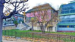 Paris en Novembre 2017 - 157 les serres du Jardin des Plantes (paspog) Tags: paris france nocembre november 2017 jardin park parc jardindesplantes