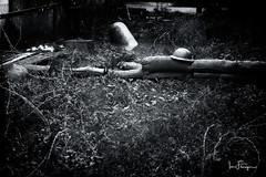 WW2 Battlefield (© Ian Flanagan) Tags: ww11 ww2 bw mono war