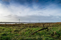Mersey Gateway (nds6346) Tags: mersey gateway bridge river cheshire widnes runcorn nikon nikond5300 nikonphotography