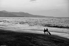 Surfers. (Carlos Arriero) Tags: laspalmas grancanaria españa spain blackandwhite blancoynegro bw carlosarriero mar sea agua water outdoor paisaje playa beach monochrome noiretblanc nikon d800e tamron 2470f28 surf surfer surfistas people gente personas bn