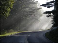 Early morning drive (cscott_va.) Tags: skyline drive shenandoah national park virginia