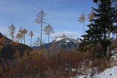 Les Ecoteaux (bulbocode909) Tags: valais suisse montchemin lesecoteaux montagnes nature automne neige arbres mélèzes sapins paysages bleu orange