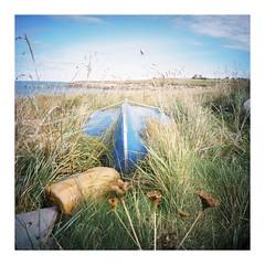 Île de Batz, September 2016 (dreifachzucker) Tags: istillshootfilm filmisnotdead believeinfilm 120 lomographylca120 lomo lca120 film c41 kodakportra160 analog analogue france frankreich îledebatz bretagne breizh bzh september23rd2016 september 2016 autaut