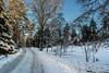 """The path"" (Terje Helberg Photography) Tags: bergen langeskogen bluesky color landscape landskap natur nature path sky snow trail trees winter"