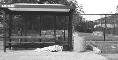 homeless (boxerrod) Tags: cemetery busstop metro trashcan blackandwhite cellphone streetphotography cold winter cloudy person alone homeless glenwoodcemetery streetpeople dark black white trees urban concrete urbanjungle city