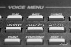 Musical Instruments. (Digifred.) Tags: macromondays musicalinstruments digifred 2017 nederland netherlands pentaxk5 hmm macro macrophotography closeup keyboard