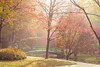 Autumn moods (Irina1010_out for sometime) Tags: fog mist garden pond bridge trees landscape gibbsgardens autumn moody light morning nature canon