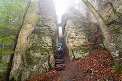 Devil's Gorge (martinstelbrink) Tags: teufellschlucht devilsgorge ernzen eifel südeifel rheinlandpfalz germany nebel fog mist dunst autumn herbst sandstein sandstone sony alpha7rii a7rii voigtländervmeclosefocusadapter hikers wanderer stairs treppe canyon schlucht gorge wideangle voigtländerheliar15mmf45iii voigtlanderheliar15mmf45iii voigtländer voigtlander heliar 15mm f45