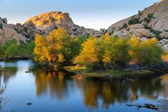 Barker Reservoir @JoshuaTreeNP