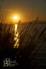 Romantik pur (beat_bieri) Tags: beatbierich sonyalpha77ii grad sonnenuntergang sonne