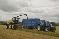 New Holland FR650 Forage Cruiser Forage Harvester filling a Broughan Engineering Mega HiSpeed Trailer drawn by a New Holland T7.210 Tractor (Shane Casey CK25) Tags: new holland fr650 forage cruiser harvester filling broughan engineering mega hispeed trailer drawn t7210 tractor yellow cnh nh casenewholland newholland silage silage17 silage2017 grass grass17 grass2017 winter feed fodder county cork ireland irish farm farmer farming agri agriculture contractor field ground soil earth cows cattle work working horse power horsepower hp pull pulling cut cutting crop lifting machine machinery nikon d7100 tracteur traktor traktori trekker trator ciągnik collecting