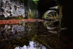Reflejos del Bosque (JoseMi Campos) Tags: fotografia naturaleza paisaje navarra reflejos eugi fabricadearmas nikon d5300 tokina rio otoño