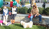 Holiday dog parade on Long Island (terryballard) Tags: coldspringharbor