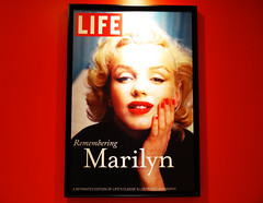 Light for a star !!! (François Tomasi) Tags: marilynmonroe star vedette françoistomasi tomasiphotography portrait pointdevue pointofview pov light color couleur visage rouge red reflex nikon magazine album presse photo photography photographie photoshop digital numérique lumière google flickr yahoo décembre 2017