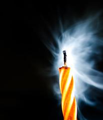 Candle Stick (Philip R Jones) Tags: hmm macro macromondays stick