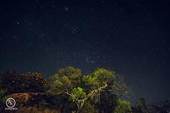 Estellas (Rogel Luna) Tags: estrellas nocturnas