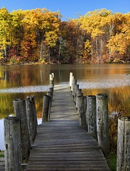Watch your step (NGC7635) Tags: autumn leaves dock fall colors leafs flora boatramp park water