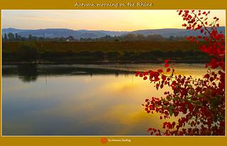 Herbstmorgen am Rhein/Autumn morning on the Rhine/莱茵河上的秋日早晨/صباح الخريف، عن، ال التعريف، رين