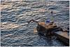 Lipari ... (miriam ulivi) Tags: miriamulivi nikod7200 italia sicilia isoleeolie lipari mare sea people persone scogliera cliff alba sunrise tuffo cliffdiving ottobre october