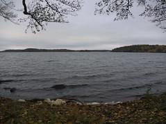 PA260707 (Asansvarld) Tags: mälaren vårberg autumn fall höst sweden sverige stockholm olympusomdem5 microfourthirds