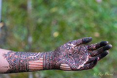 Mehendi – 2 (Roy Prasad) Tags: mehendi mehndi art cosmetics makeup beauty painting prasad royprasad sony ilce9 a9 bokeh
