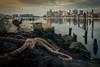 Boston Awakes (ADFitz1967) Tags: calm eastboston reflection boston cityscape rope pilings maverick harbour jetty massachusetts waterfront
