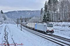 BR 186 446, Lenzburg (CH) (Alexandre Zanello) Tags: br186 traxx bombardier f140ms2e railpool railcare coop lenzburg rupperswil