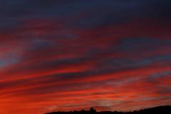 Sunset 10 20 17 #28 (Az Skies Photography) Tags: sun set sunset dusk twilight nightfall sky skyline skyscape arizona az rio rico riorico rioricoaz arizonasky arizonaskyline arizonaskyscape arizonasunset cloud clouds red orange yellow gold golden salmon black october 20 2017 october202017 102017 10202017 canon eos 80d canoneos80d eos80d
