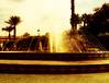 Fontaine (JadouGu) Tags: fontaine architecture maroc marrakech koutoubia jardins sun soleil été vacances sepia palmiers mosaique palmtree eau