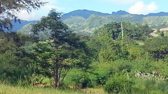 20171002_010 (Subic) Tags: philippines hash landscapes