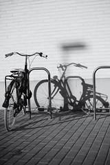 Shadow (lucas2068) Tags: shadow sombra bici bicycle bicicleta cycle bw blackandwhite blancoynegro byn monochrome monocromo