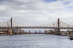 r_171114126_beat0075_a (Mitch Waxman) Tags: citywideferry eastrivershoreline longislandcity newyorkcity newyorkharbor queens queensborobridge rooseveltisland newyork