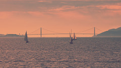 Sometimes it really is golden (Gunn Shots (Mark Gunn)) Tags: goldengate goldengatebridge alcatrazisland angelisland sailboats berkeleymarina skatesrestaurant