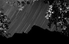 Stars (Igor Komissarov) Tags: stars atmosphere sochi sky nikon nature noiretblanc night nuture nothernlights landscape light longexposure lines lights ligth minimalism tree trees strange bw bright dark mountain mountains monochrome caucasian russia rosakhutor ridges r abigfave