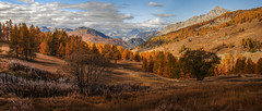 The magic of autumn (rinogas) Tags: italy piemonte sestriere vallesusa autumn color rinogas