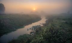 Good morning sunshine (Ingeborg Ruyken) Tags: dropbox autumn zonsopkomst sunrise dawn aa fall flickr herfst kanaalpark sun zon empel river rosmalenseaa natuurfotografie rivier 500pxs mist fog
