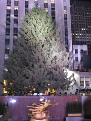 2017 Christmas Tree Rockefeller Center before lighting 4247 (Brechtbug) Tags: 2017 christmas tree rockefeller center before lighting 11252017 nyc 30 rock new york city standing up above ice rink with snow shoveling workers skating holiday decoration ornaments night lights lites light oversize load ornament prometheus gold mythological statue sculpture fountain fountains post thanksgiving
