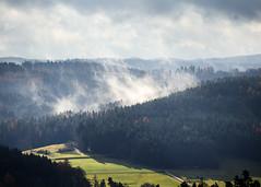 November Fog (Gr@vity) Tags: fog morning mist canon m5 autumn herbst wood wald landschaft frankenalb