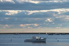 Open Harbor (massmatt) Tags: boat harbor marblehead massachusetts watercraft